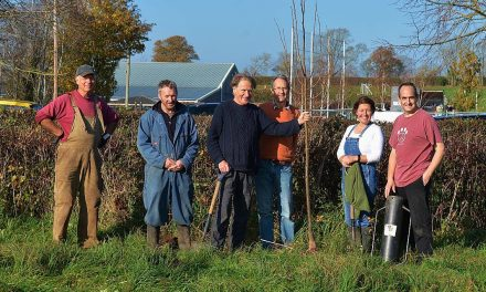 29th Jan – Trees for Somerset: Trees for your Parish